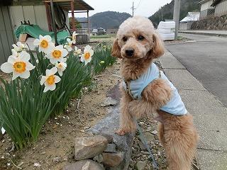 2012_0416_170232-CIMG0084.jpg