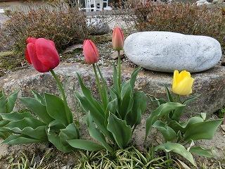 2012_0419_172654-CIMG0107.jpg