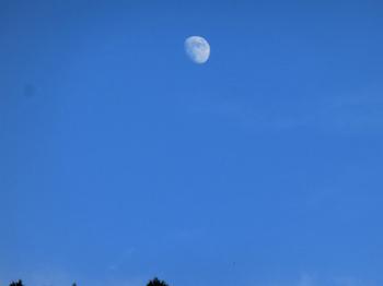 2012_0926_172206-CIMG0789.jpg