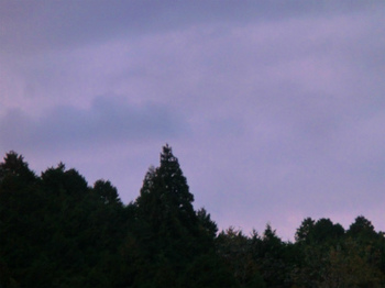 2012_1108_165134-CIMG0991.jpg